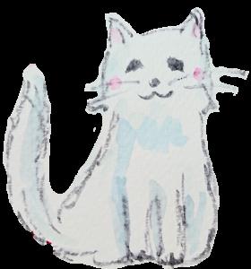 優しい表情の白猫の画像